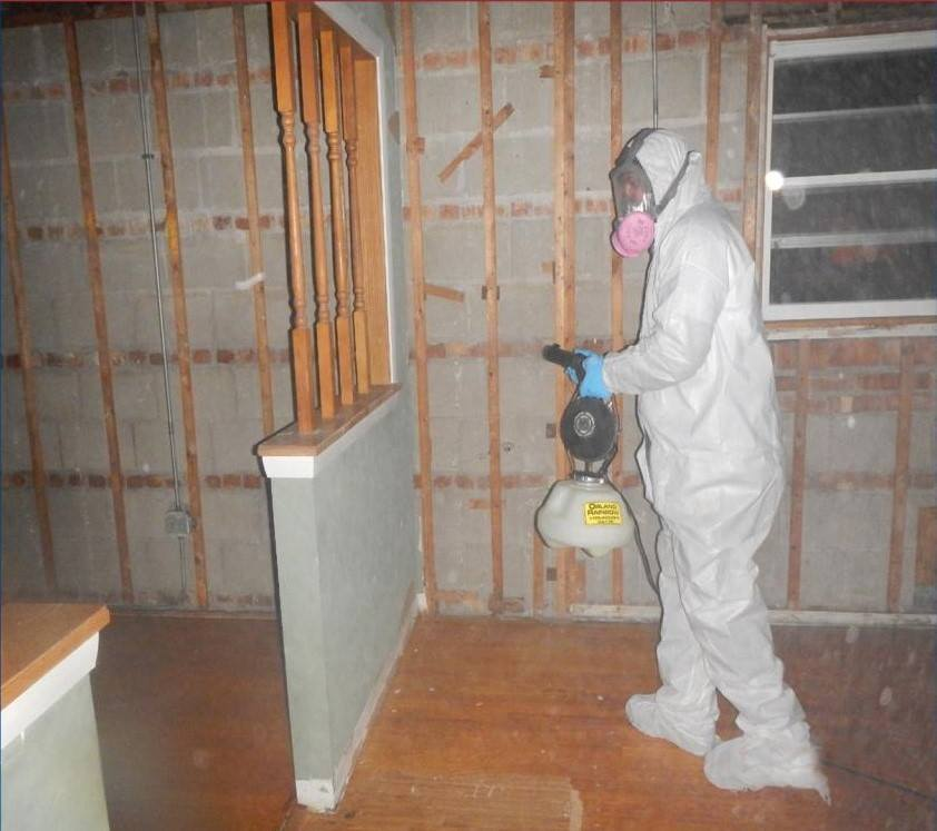 Mold removal and mold abatement services being performed in a Jersey City, New Jersey residence